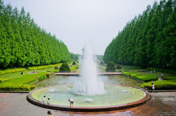 Hiyokko_Funfui_Park_001