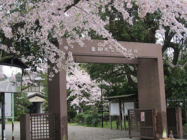 Kimisui_004