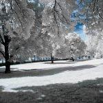 winter-872051_640